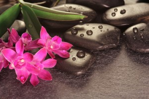 Pink flowers and Stones