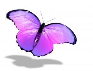 Hynotherapy Haslemere Butterfly lr