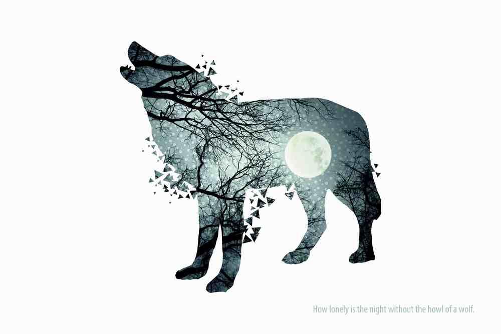 Wolfy lr