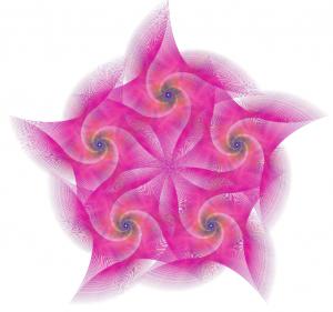 Pink fractal lr ii
